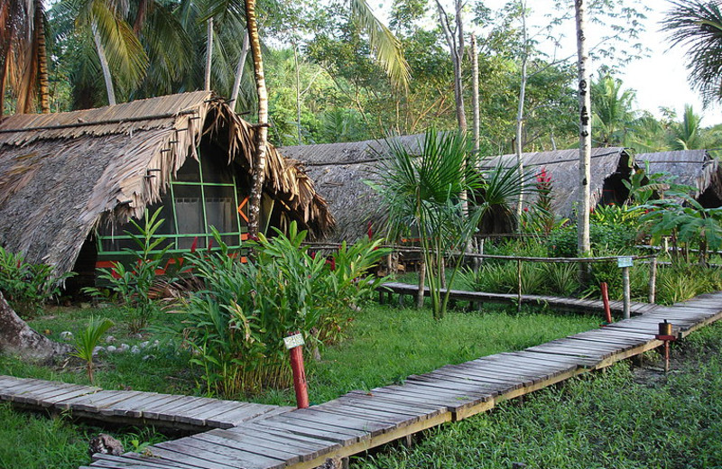 Exterior at Orinoco Delta Lodge.