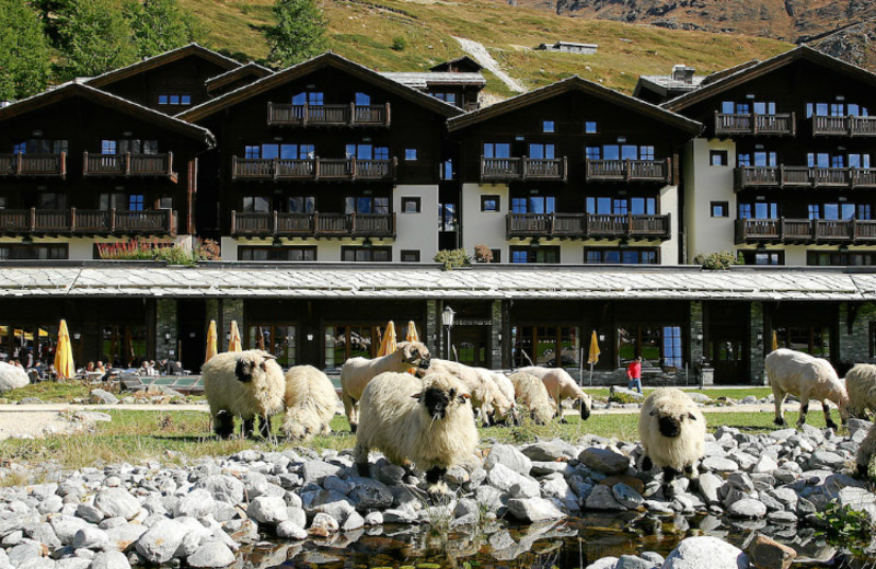 Exterior view of Riffelalp Resort 2222m.