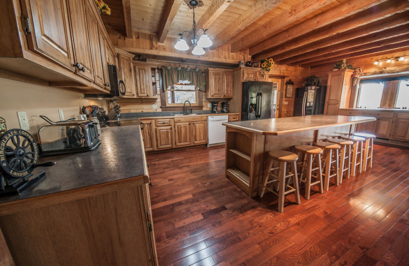 Cabin kitchen at Oak Haven Resort.