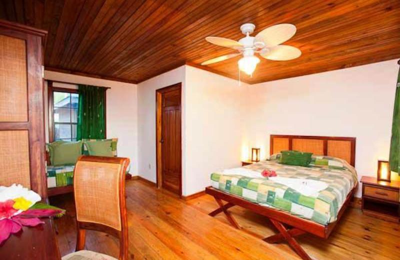 Guest room at Las Rocas Resort.