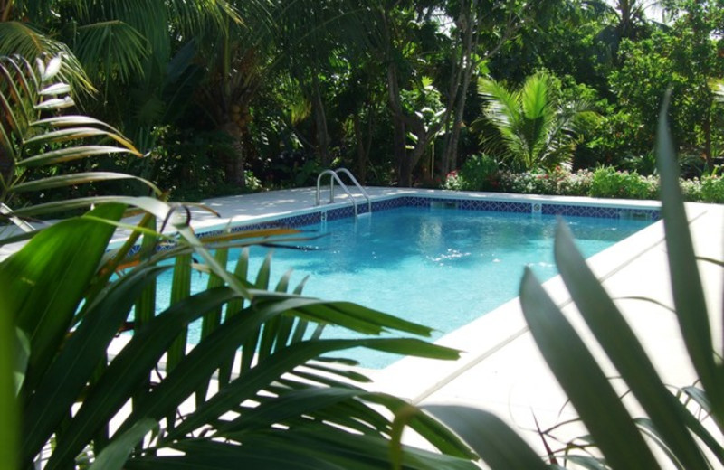 Outdoor pool at The Retreat at Lookout.