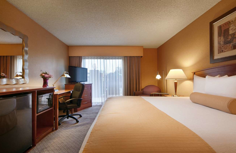Guest room at Best Western Tempe by the Mall.