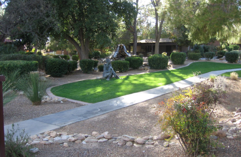 Grounds at Canyon Ranch Tucson.