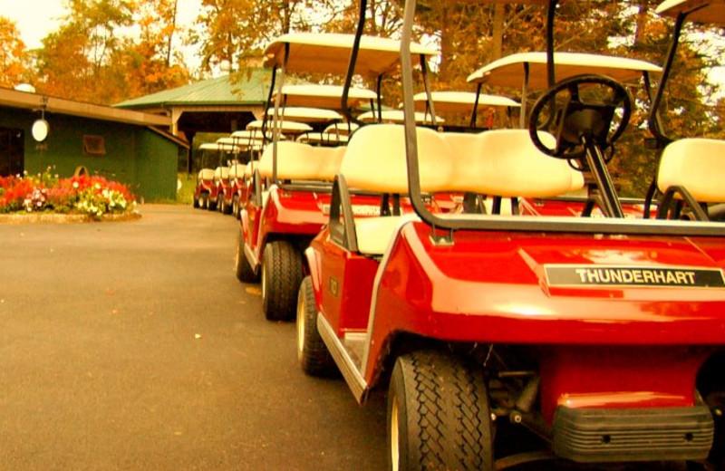 Golf carts at Thunderhart Golf Course.