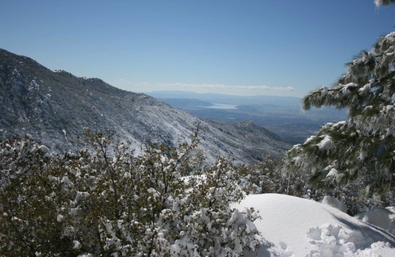 Scenic view at Idyllwild Vacation Cabins.