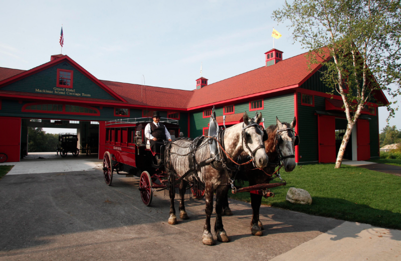 Horse carriage transportation at Grand Hotel.