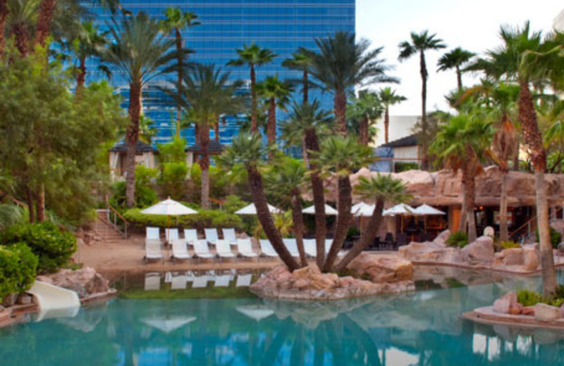 Hot Tub Area at Hard Rock Hotel