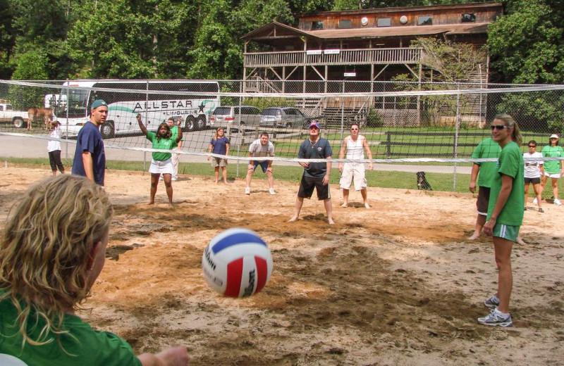 Volleyball at Forrest Hills Resort.