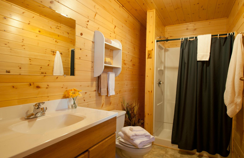 Cabin bathroom at Tetu Island Lodge.
