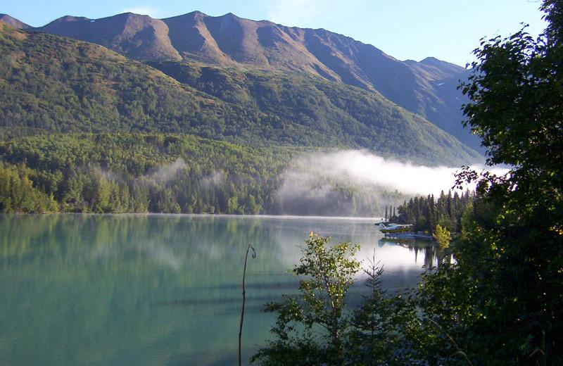 Scenic view at Kenai River Drifters Lodge.