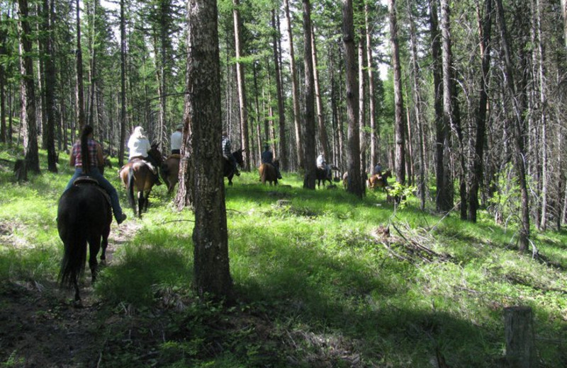 Trail riding at RiverStone Family Lodge.