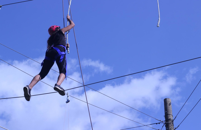 High Ropes Course at Honor's Haven Retreat & Conference