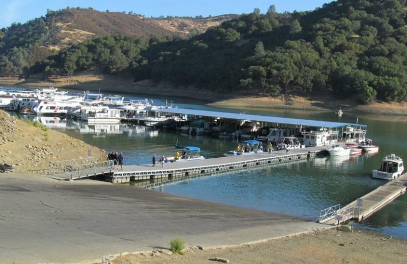 The marina at Pleasure Cove.