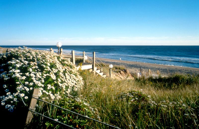 The beach at Ocean Colony.