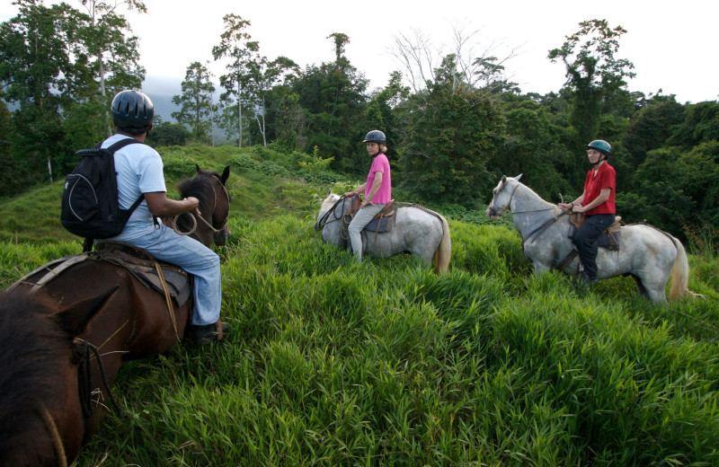 Horseback riding at Selva Bananito Lodge.