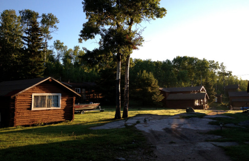 Cabins at Maynard Lake Lodge and Outpost.