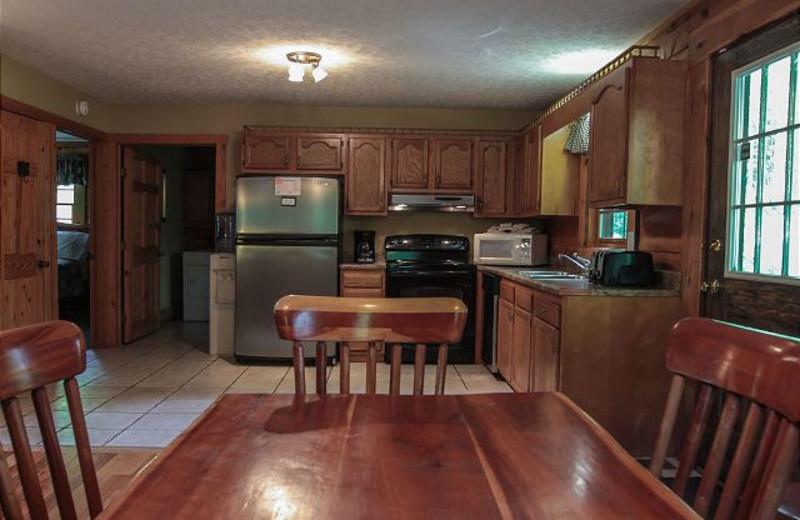Cabin kitchen at Dogwood.