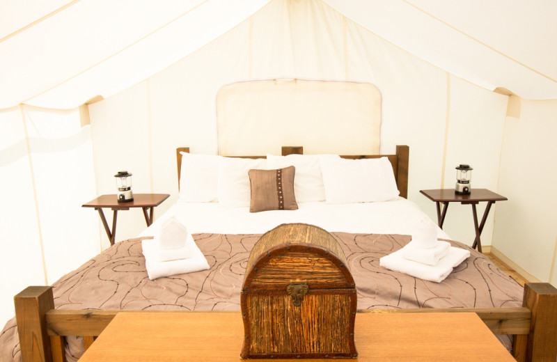 Tent bed at Grand Canyon Under Canvas.