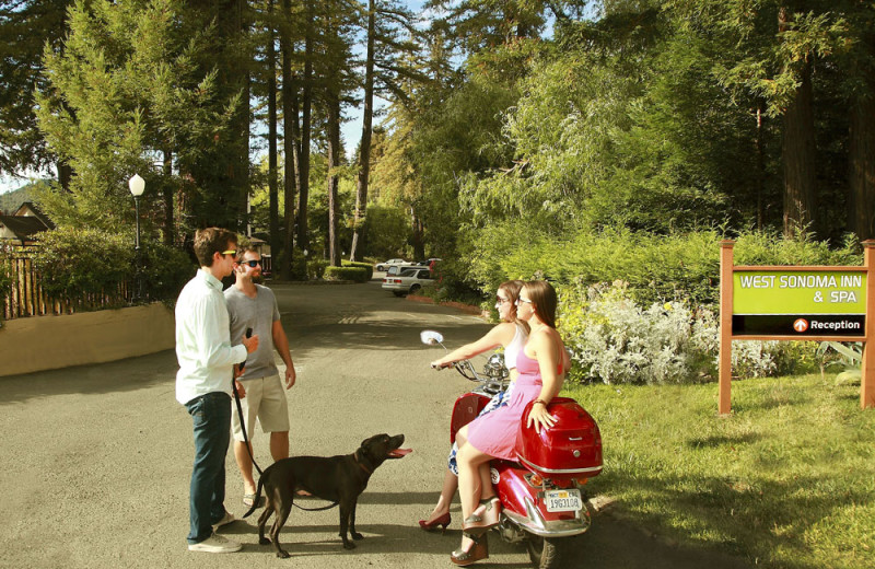Pets welcome at West Sonoma Inn and Spa.