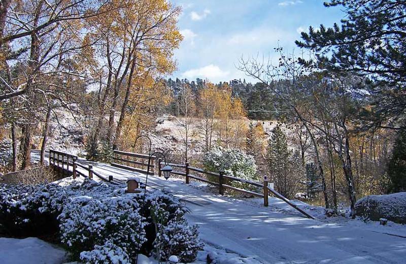 Winter landscape at 4 Seasons Inn.