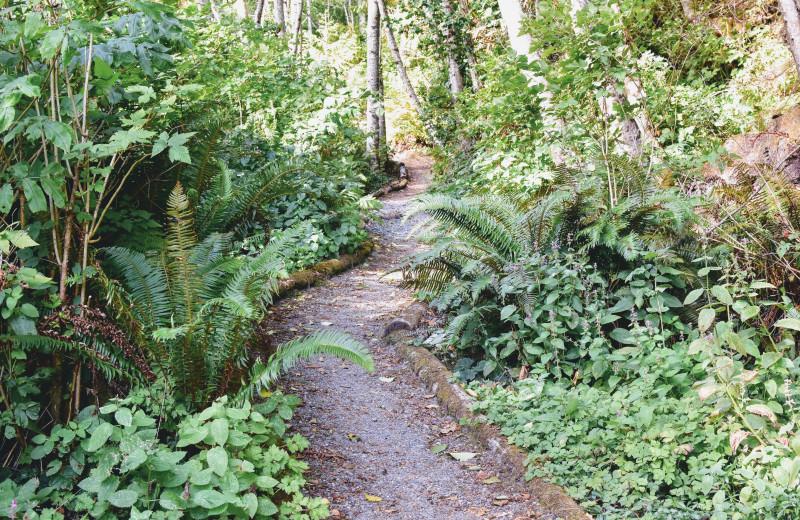 Trail at Ocean Wilderness Inn & Spa Retreat.