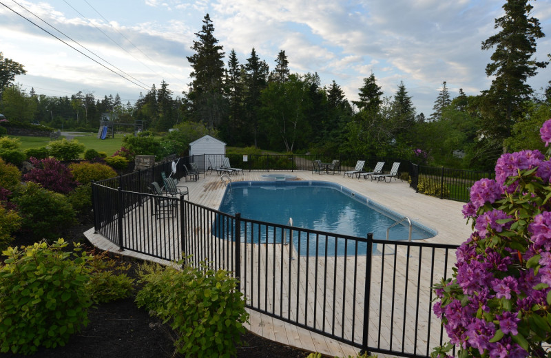 Outdoor pool at Newagen Seaside Inn.