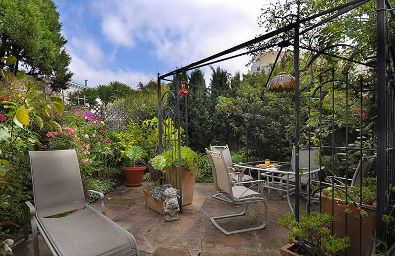 Garden view at Noe's Nest Bed & Breakfast.
