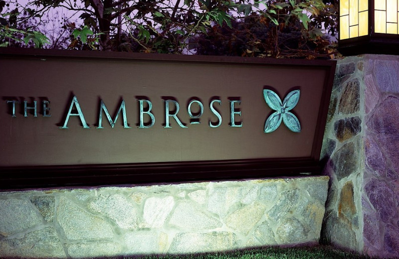 Welcome to The Ambrose.