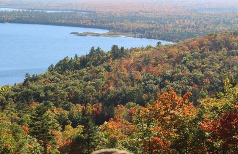 View of lake at Aqua Log Cabin Resort.