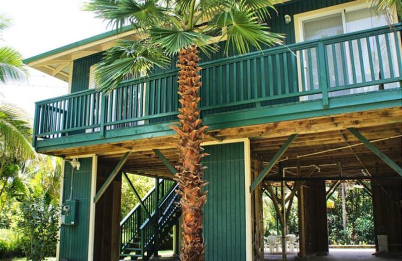 Vacation rental exterior view of Big Island Vacation Rentals.