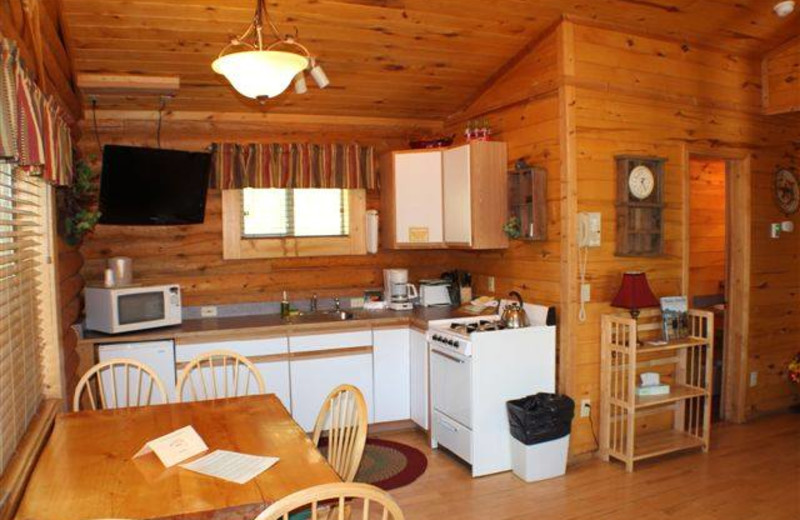 Cabin kitchen at High Country Lodge.