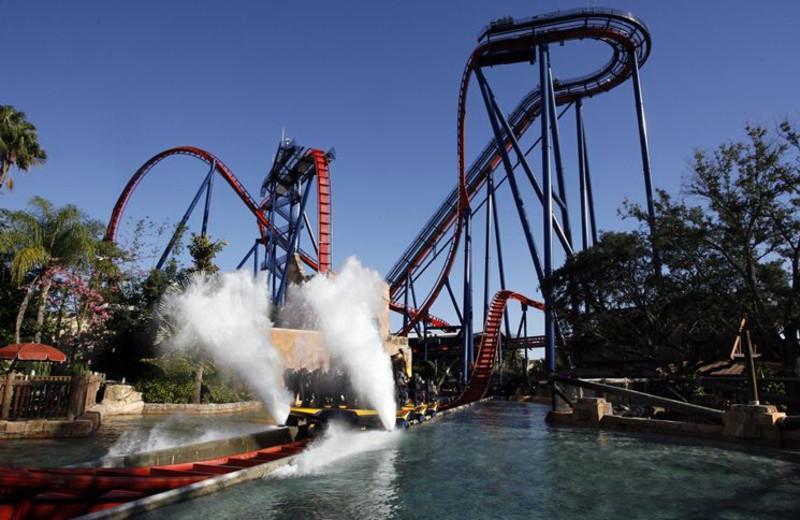 Busch Gardens near Sunsational Beach Rentals. LLC.