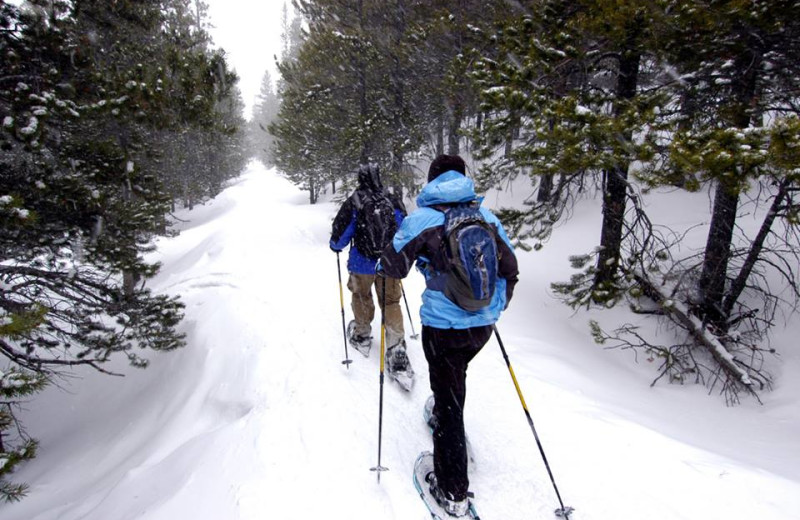 Cross country skiing at High Country Lodge.