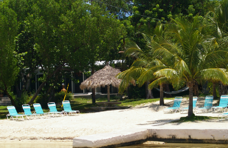 Beach chairs at Rock Reef Resort.