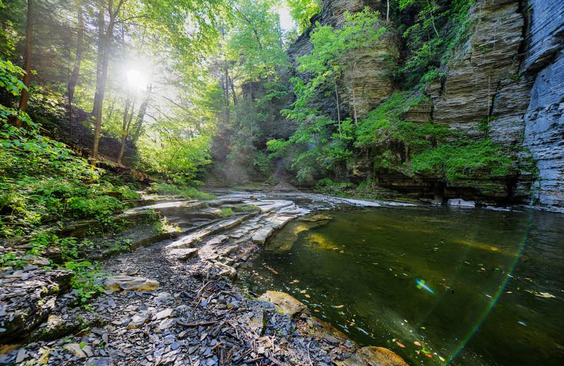 Scenic creek near Black Sheep Inn and Spa.