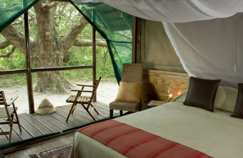 Guest room at Kosi Forest Camp.