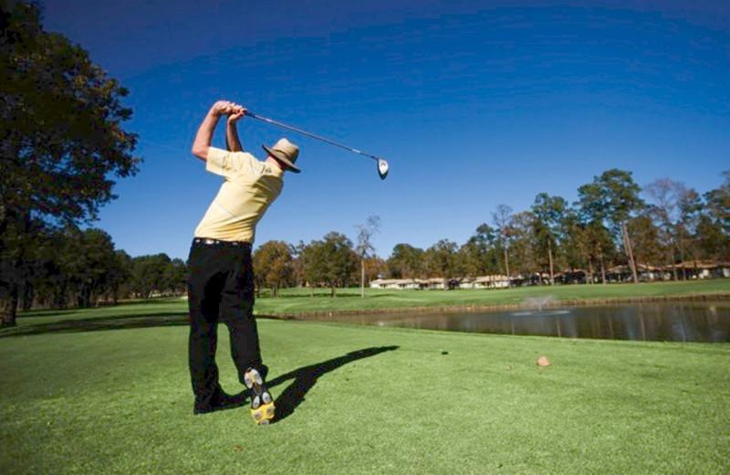 Golfing at La Torretta Lake Resort.