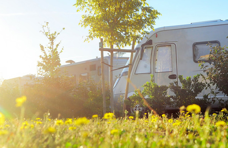 RV camping at ACE Adventure Resort.