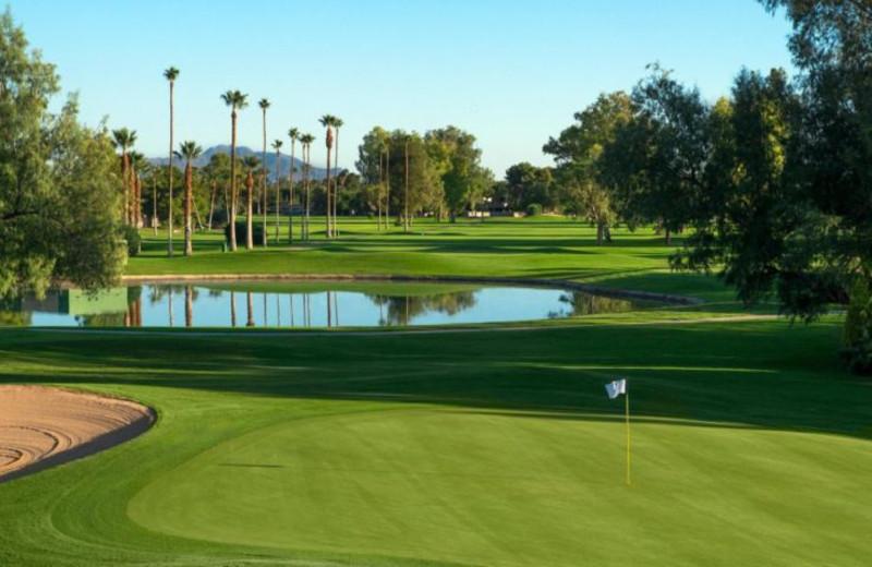 Golf course at Sheraton San Marcos Golf Resort.