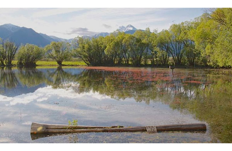 Lake view at Ninepipes Lodge.