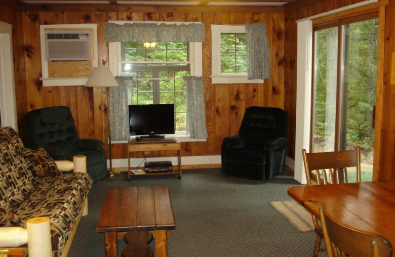 Cabin living room at Moore Springs Resort.