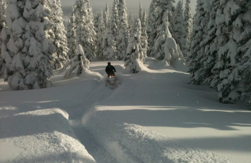 Snowmobiling at Island Park Cabins.
