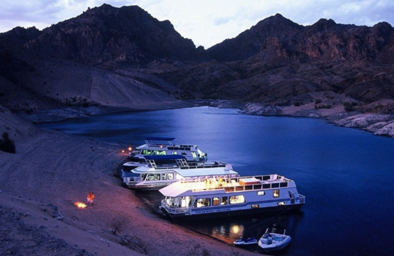 Houseboats at Callville Bay.