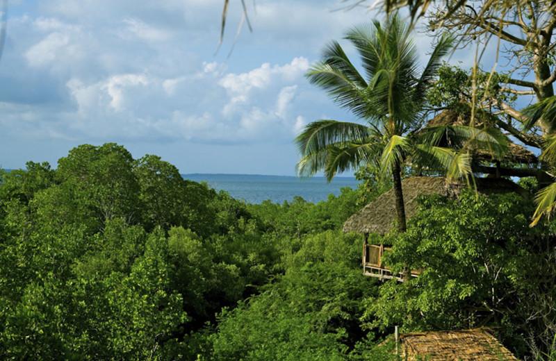 Exterior view of Sanctuary Tanzania.