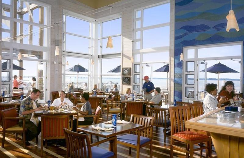 Dining at Hyatt Regency Chesapeake Bay Golf Resort, Spa and Marina.