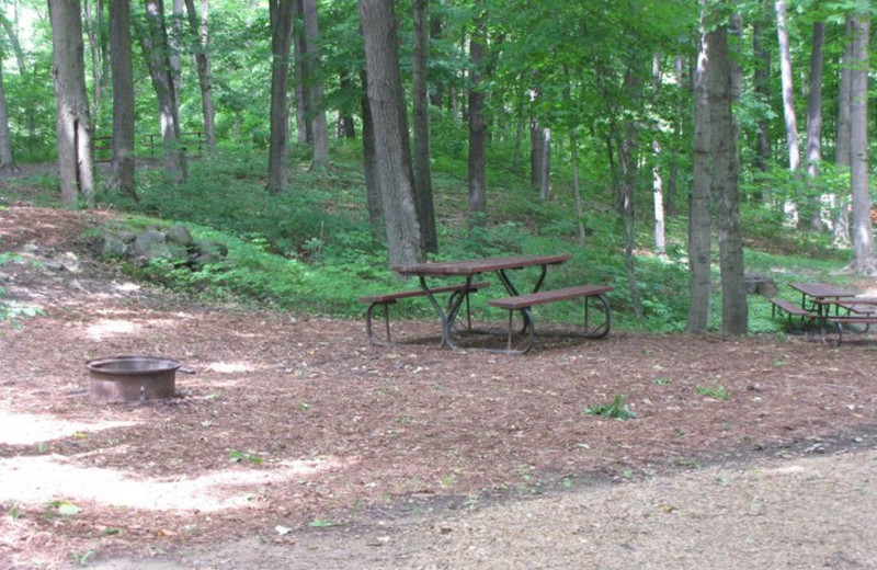 Campsite at Merry Mac's Campground