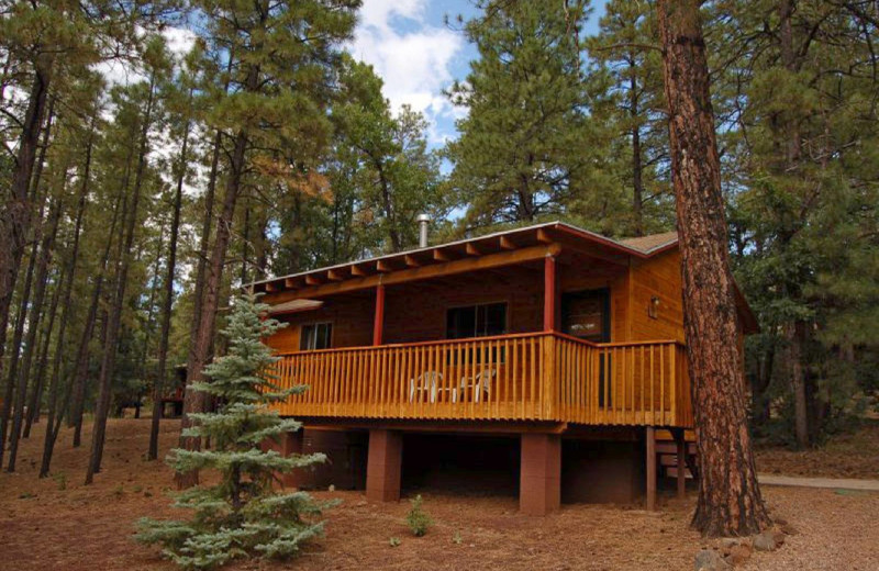 Cabin exterior at Whispering Pines Resort.
