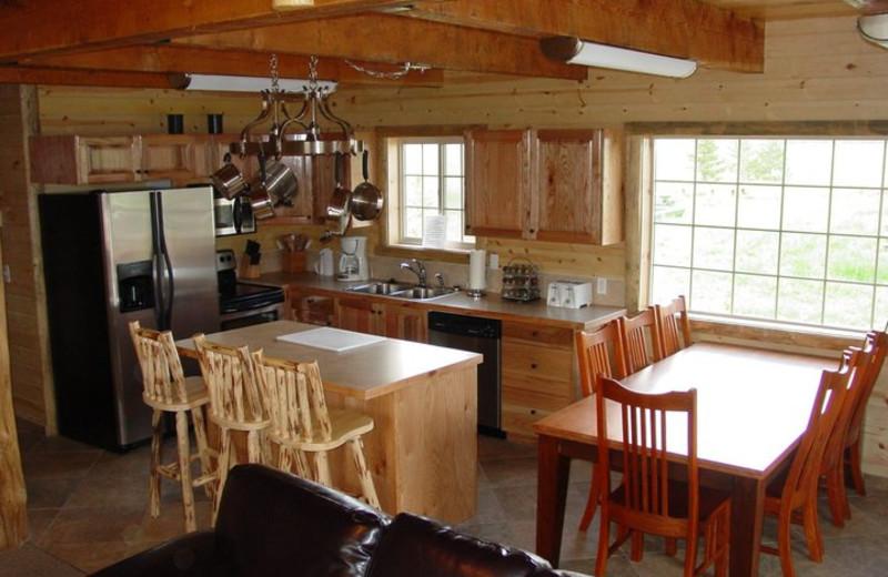 Cabin kitchen at Island Park Cabins.