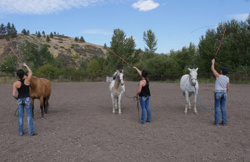 Horse lessons at Rocking Z Ranch.
