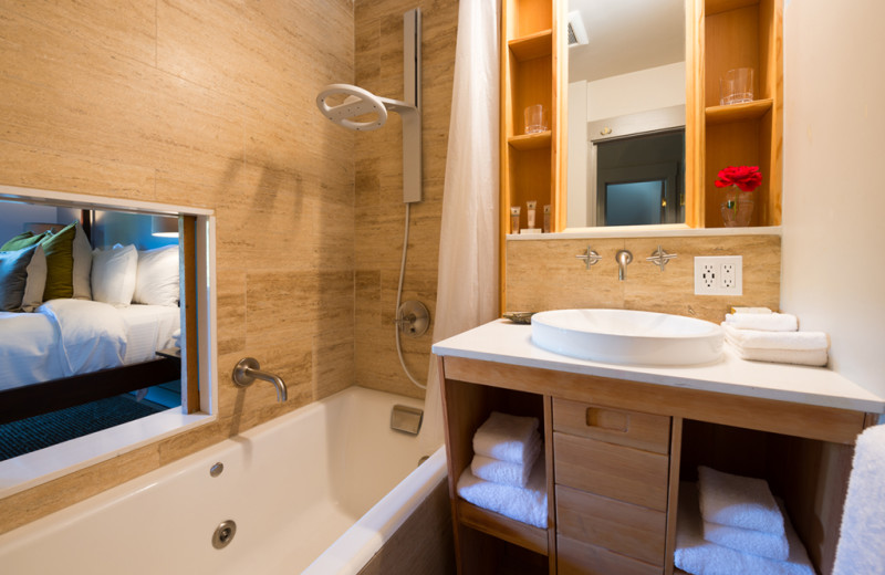 Guest bathroom at Olema House.